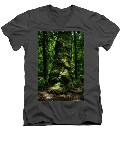 Big Moody Tree In Forest Men's V-Neck T-Shirt