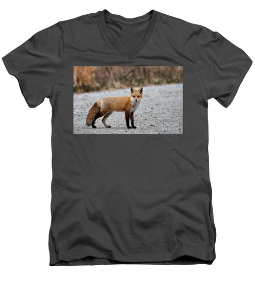 Men's V-Neck T-Shirt featuring the photograph Big Red by Tamera James
