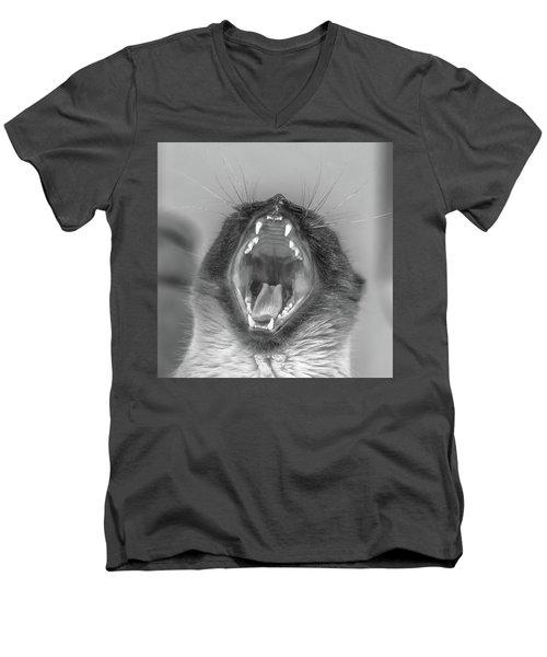 Big Yawn Men's V-Neck T-Shirt