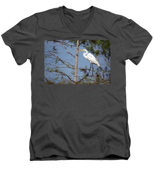 Bird 154 Men's V-Neck T-Shirt