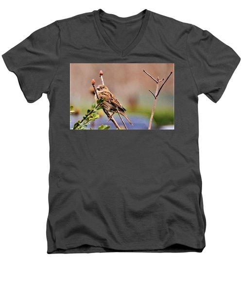 Bird In The Cold Men's V-Neck T-Shirt