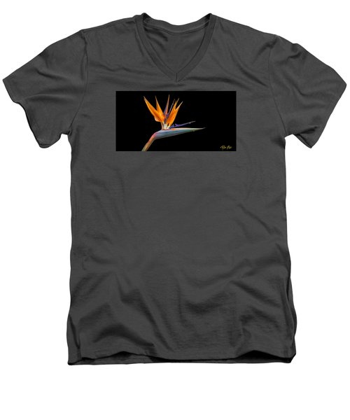 Bird Of Paradise Flower On Black Men's V-Neck T-Shirt