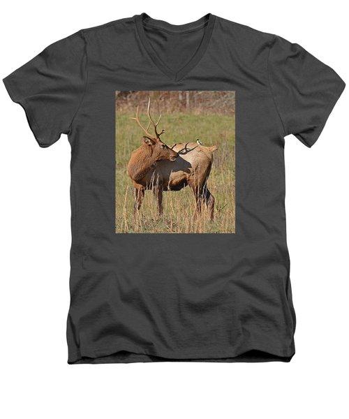 Bird On My Back Men's V-Neck T-Shirt by Alan Lenk