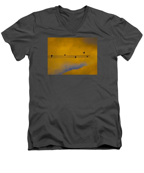 Bird Song Men's V-Neck T-Shirt by Mark Blauhoefer