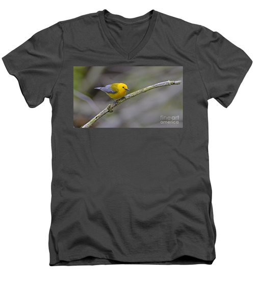 Birder's Dream Men's V-Neck T-Shirt