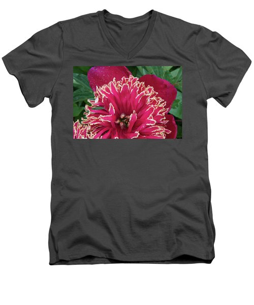 Bird's Nest Men's V-Neck T-Shirt by Jim Gillen