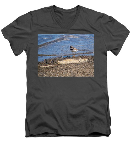 Birds Of Maine Men's V-Neck T-Shirt by Trace Kittrell