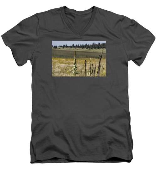 Men's V-Neck T-Shirt featuring the photograph Birds On Stands by Laura Pratt