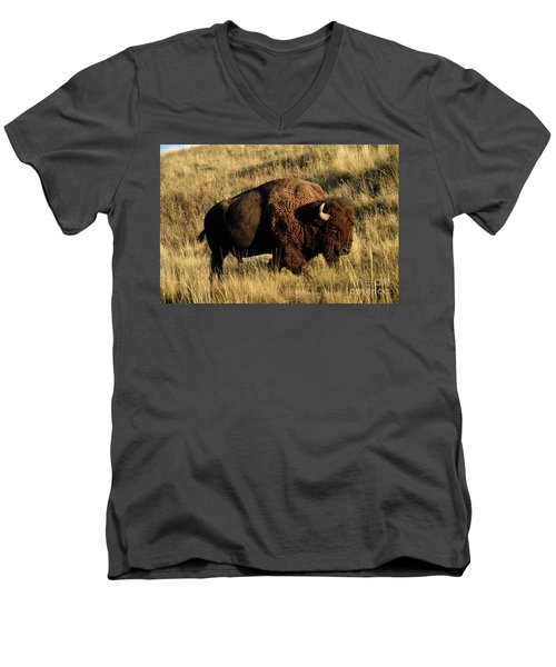 Bison  Men's V-Neck T-Shirt by Cindy Murphy - NightVisions