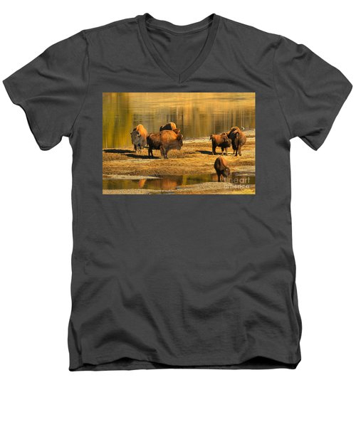 Men's V-Neck T-Shirt featuring the photograph Bison Family Crossing by Adam Jewell