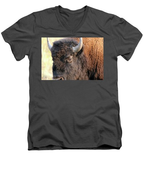 Bison Head Study Men's V-Neck T-Shirt