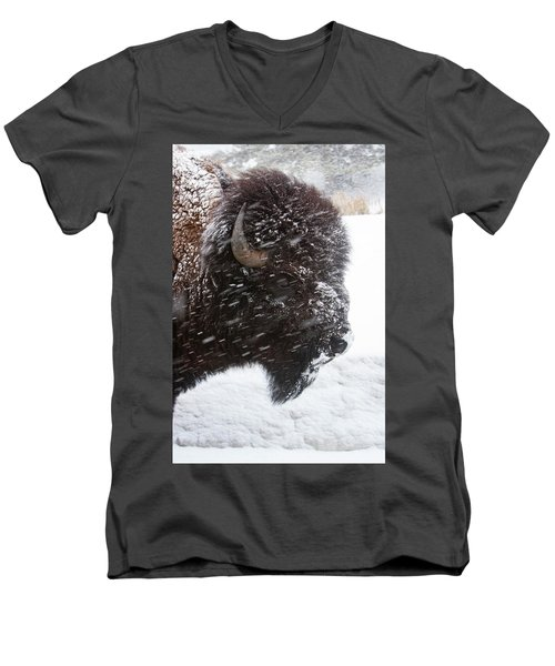 Bison In Snow Men's V-Neck T-Shirt