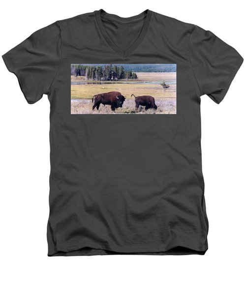 Bison In Yellowstone Men's V-Neck T-Shirt