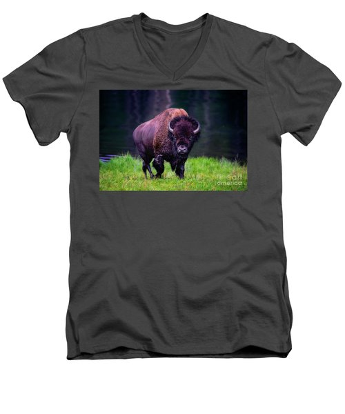 Bison Of Yellowstone Men's V-Neck T-Shirt by Jim  Hatch