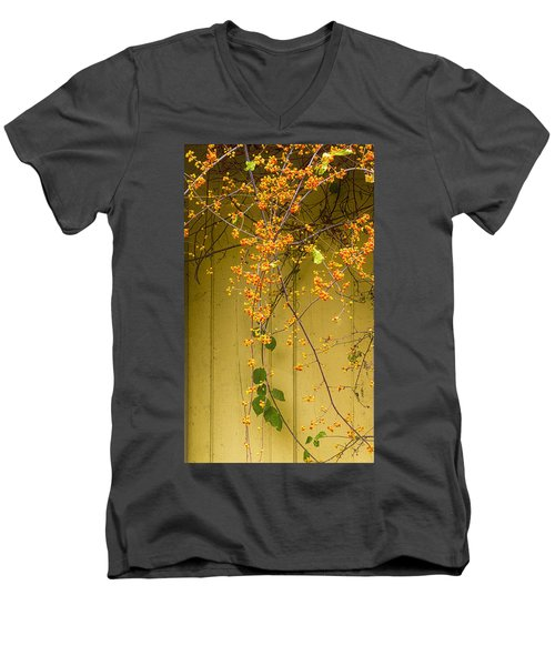 Bittersweet Vine Men's V-Neck T-Shirt