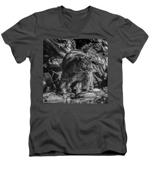 Black Bear Creekside Men's V-Neck T-Shirt