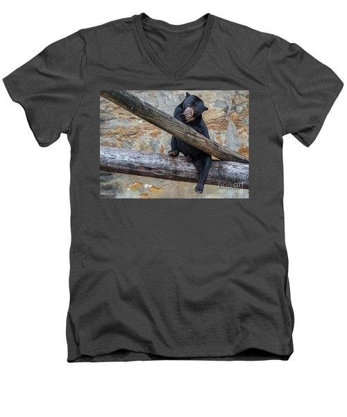 Black Bear Cub Sitting On Tree Trunk Men's V-Neck T-Shirt