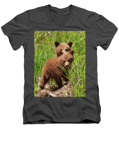Black Bear Cubs Men's V-Neck T-Shirt
