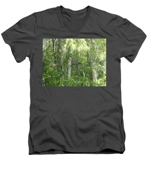 Black Birds And Cyprus Men's V-Neck T-Shirt