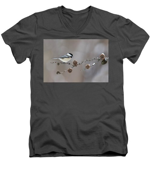 Men's V-Neck T-Shirt featuring the photograph Black-capped Chickadee by Mircea Costina Photography
