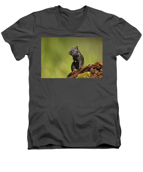 Black Chipmunk On Log Men's V-Neck T-Shirt