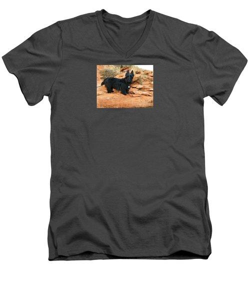 Black Dog Red Rock Men's V-Neck T-Shirt by Michele Penner