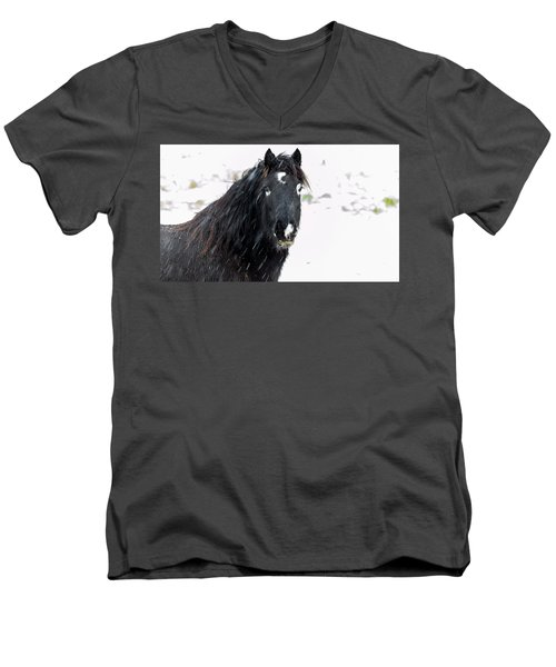 Black Horse Staring In The Snow Men's V-Neck T-Shirt