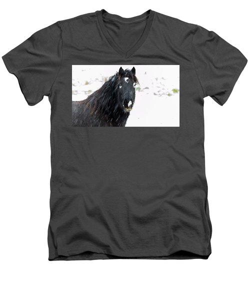Black Horse Staring In The Snow Men's V-Neck T-Shirt