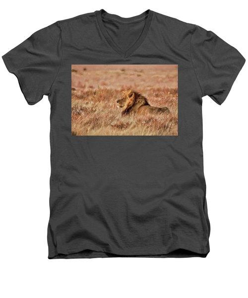Black-maned Lion Of The Kalahari Waiting Men's V-Neck T-Shirt
