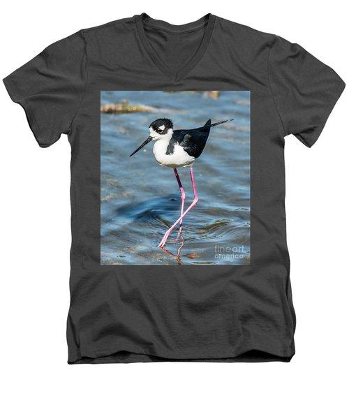 Black-necked Stilt Shows Legs Men's V-Neck T-Shirt