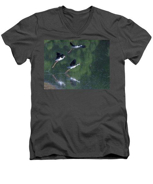 Black-necked Stilts 4302-080917-2cr Men's V-Neck T-Shirt