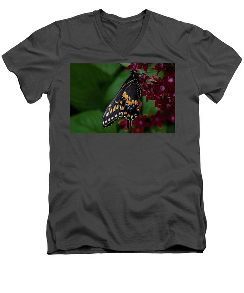 Men's V-Neck T-Shirt featuring the photograph Black Swallowtail Butterfly by Jay Stockhaus