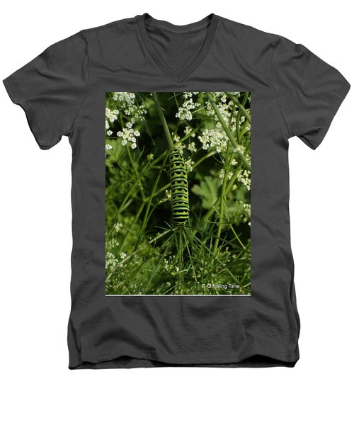 Men's V-Neck T-Shirt featuring the painting Black Swallowtail Butteryfly Caterpillar by Chholing Taha