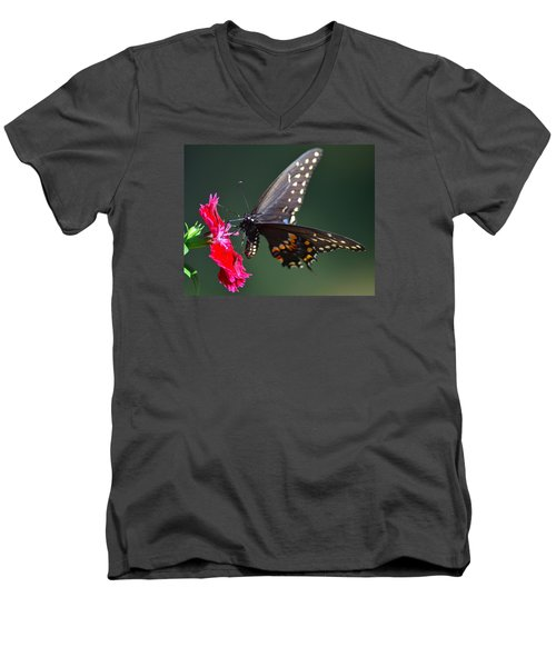Black Tiger Swallowtail Men's V-Neck T-Shirt by Kathy Eickenberg
