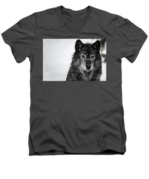 Black Wolf I Men's V-Neck T-Shirt by Brad Allen Fine Art