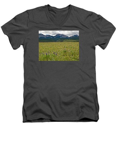Blackleaf Canyon Men's V-Neck T-Shirt