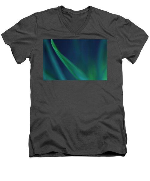 Blade Of Grass  Men's V-Neck T-Shirt by Debbie Oppermann
