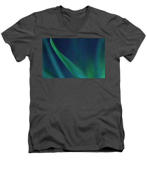 Blade Of Grass  Men's V-Neck T-Shirt