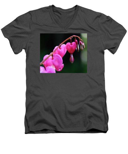 Bleeding Hearts 2 -  Men's V-Neck T-Shirt