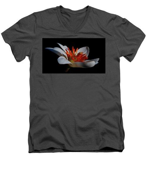 Bloodroot Art Men's V-Neck T-Shirt
