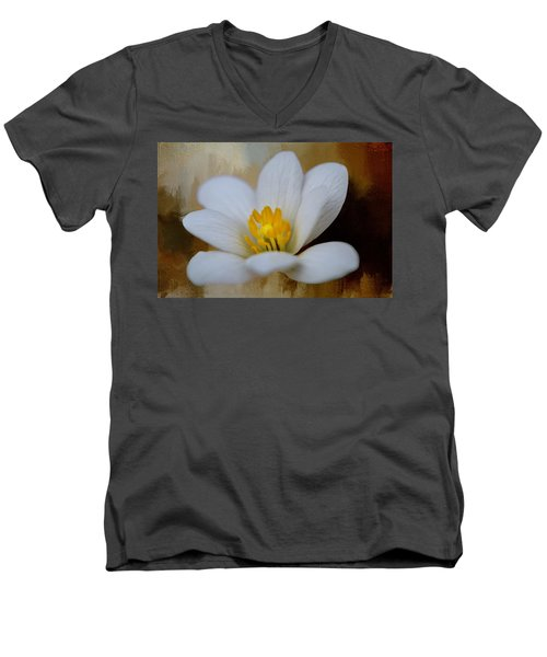 Bloodroot Men's V-Neck T-Shirt by Diana Boyd