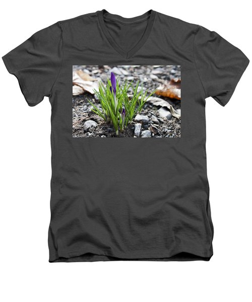 Bloom Awaits Men's V-Neck T-Shirt by Jeff Severson
