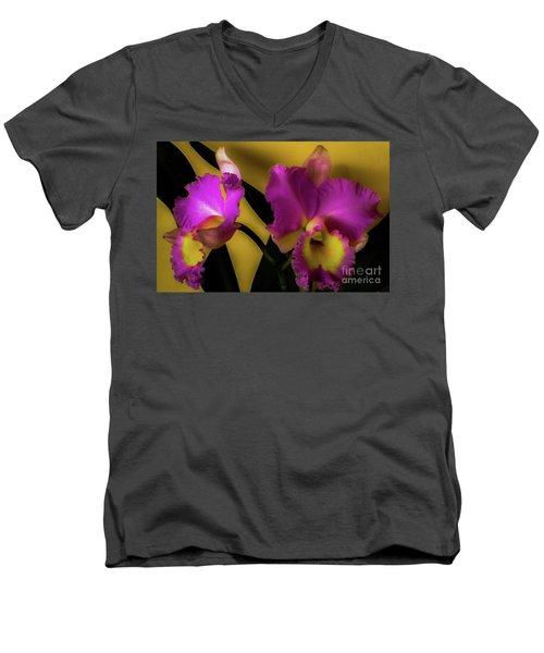 Blooming Cattleya Orchids Men's V-Neck T-Shirt