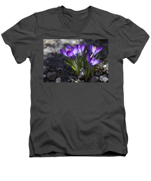 Men's V-Neck T-Shirt featuring the photograph Blooming Crocus #2 by Jeff Severson