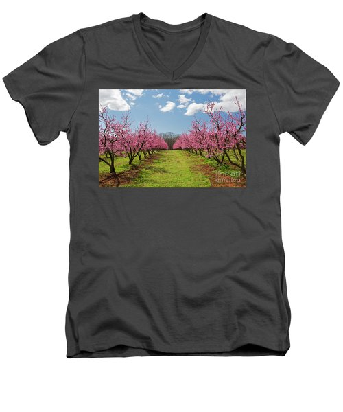 Blooming Peach Orchard 1 Men's V-Neck T-Shirt