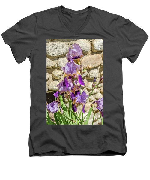 Blooming Purple Iris Men's V-Neck T-Shirt by Sue Smith