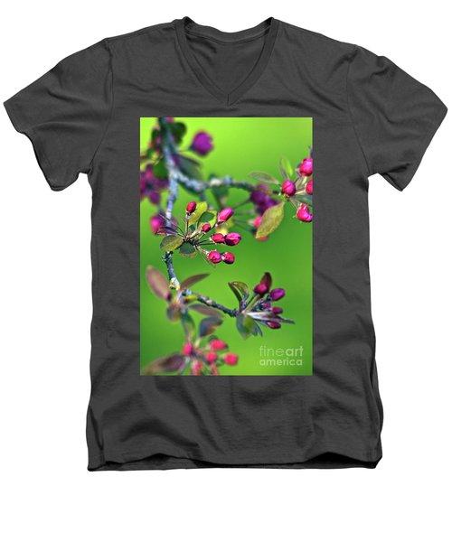 Blooming Spring Poetry Men's V-Neck T-Shirt