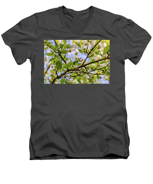 Blossoms And Leaves Men's V-Neck T-Shirt