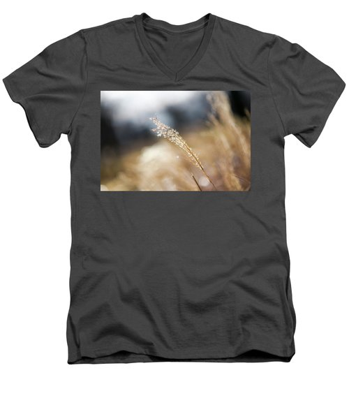 Blowing In The Wind Men's V-Neck T-Shirt