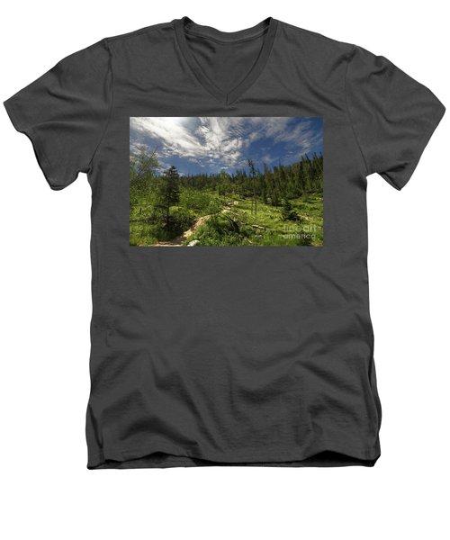 Blue And Green Men's V-Neck T-Shirt